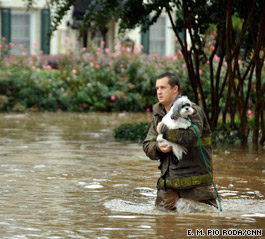 t1home.flood.dog.cnn